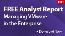 Managing VMware in the Enterprise