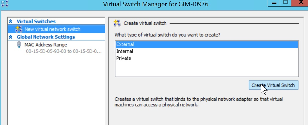 Figure 2. vSwitch Manager