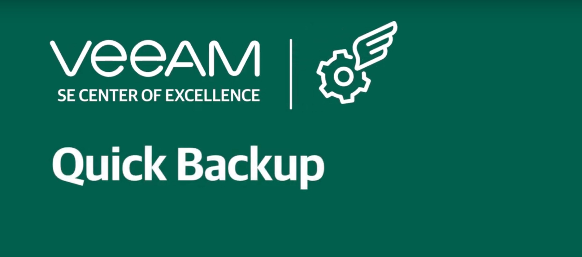 What is quick backup?