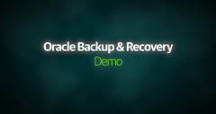 Oracle Backup & Recovery Demo