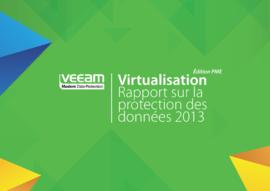 Rapport annuel 2013 sur la protection des données, édition PME – Résultats de l'enquête